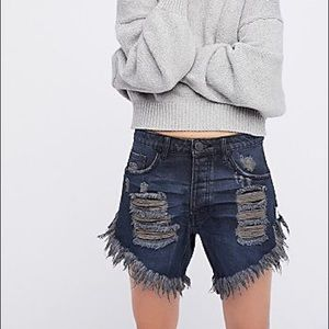 One Teaspoon Free People Frankies Shorts size 24